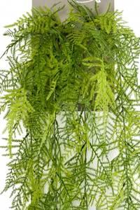 Bilde av Kunstig  Asparagus Plumosus 80cm