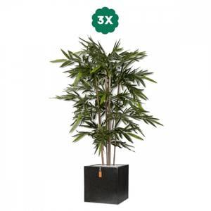 Bilde av 3 Stk Kunstige Bambus i Potter 180cm