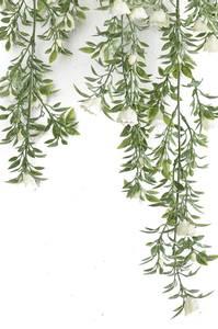 Bilde av Kunstig Hengende Roser Hvit 75cm