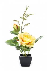 Bilde av Kunstig Rose Gul i Potte 25 cm